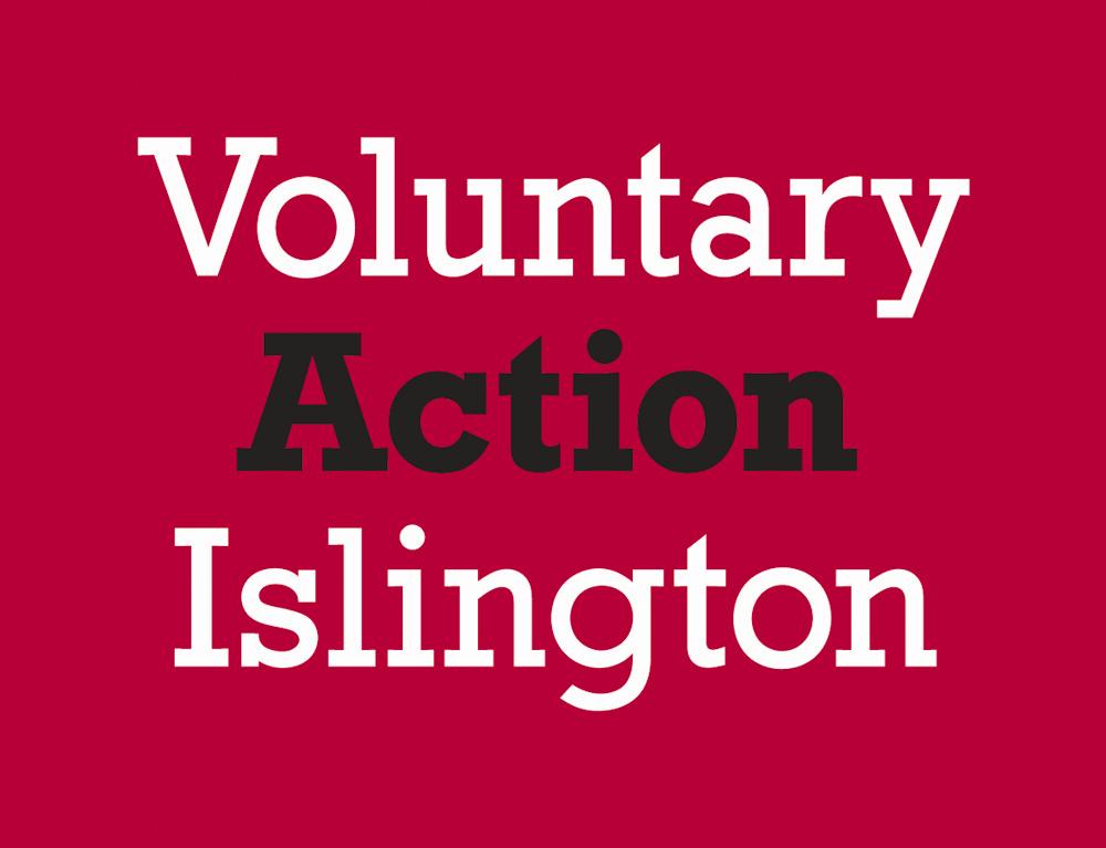 volunteer organizations in moldova essay